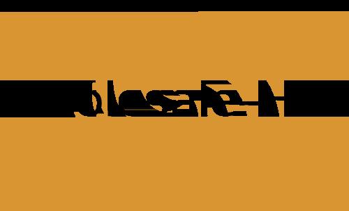 Wholesale Hub Logo